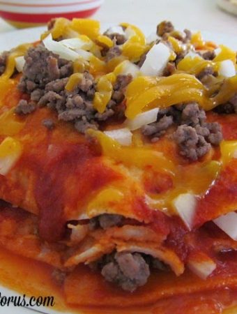 Red Enchiladas- Stacked Chihuahua Style