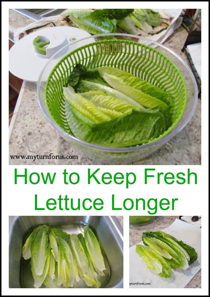 Fresh Lettuce longer