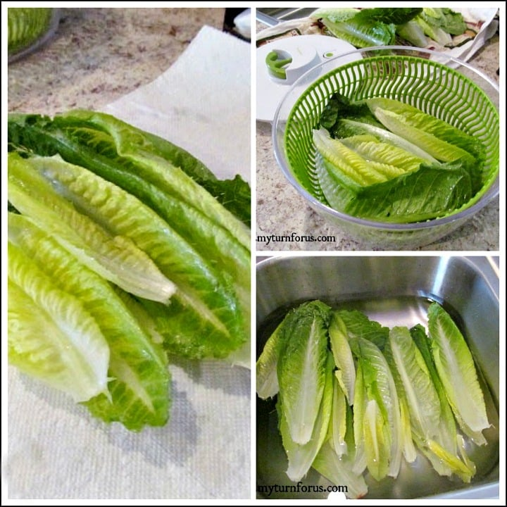 Fresh Lettuce, lettuce crisper, How to Keep Lettuce Fresh