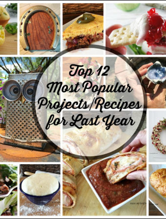 Top 12 Most Popular Projects/Recipes for Last Year