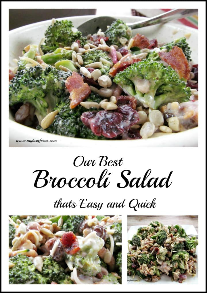 Broccoli Salad with red onion, bacon, sunflower seeds, Craisins, cheese and coleslaw dressing