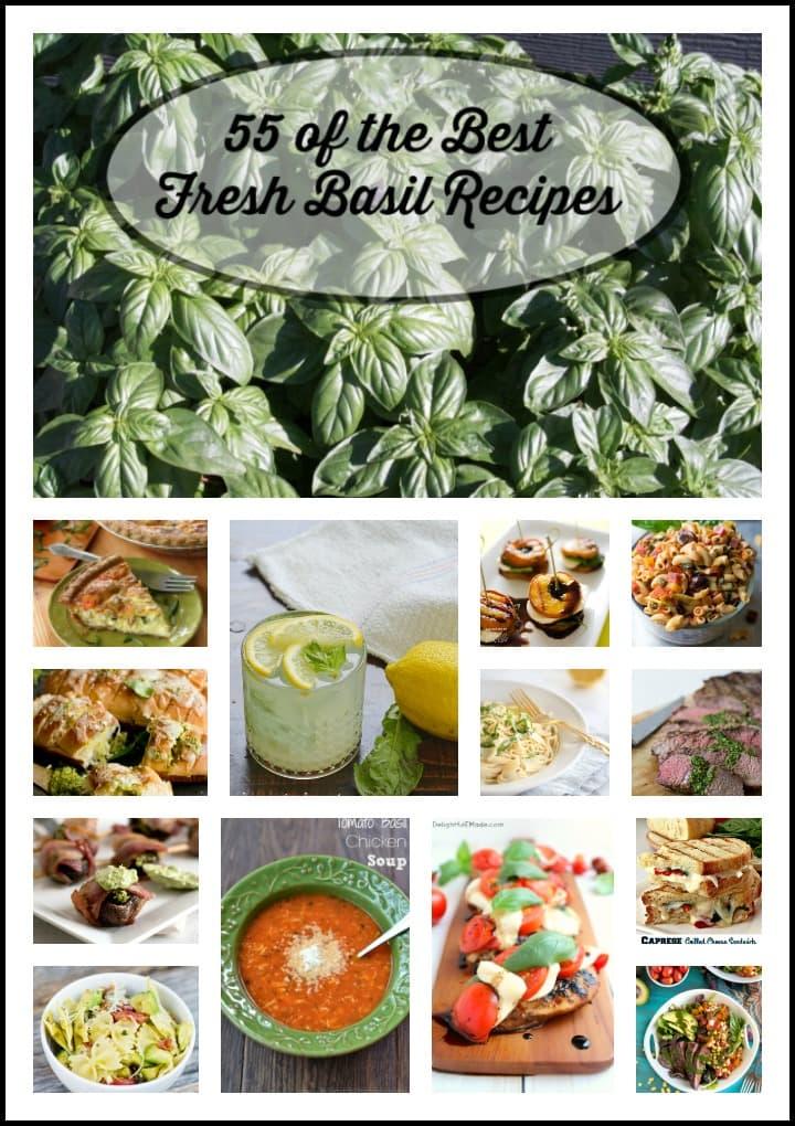sweet basil recipes