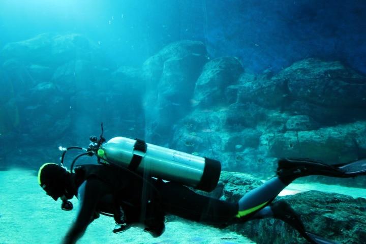 Texas scuba diving