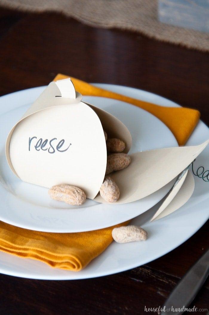 Thanksgiving table favors, unique place card ideas