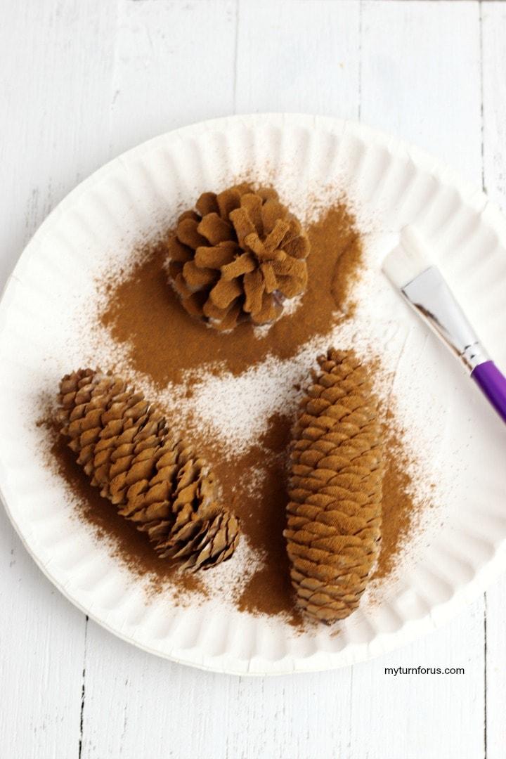 cinnamon pine cones