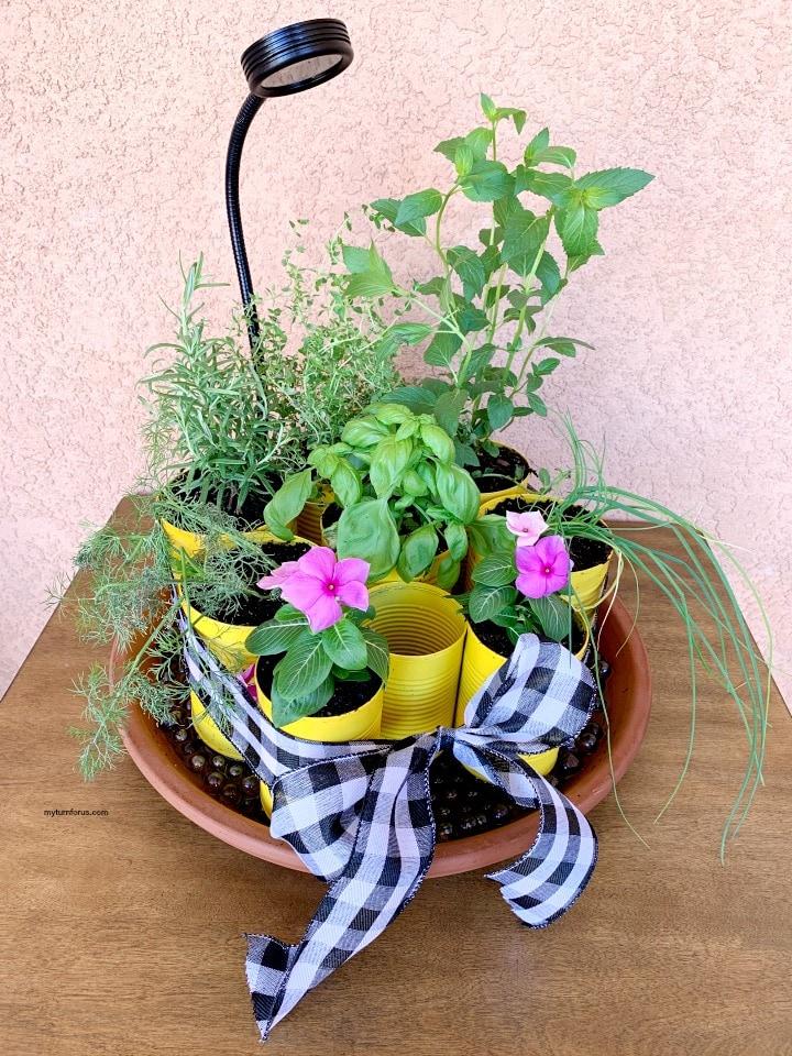 DIY indoor herb garden kit with grow light