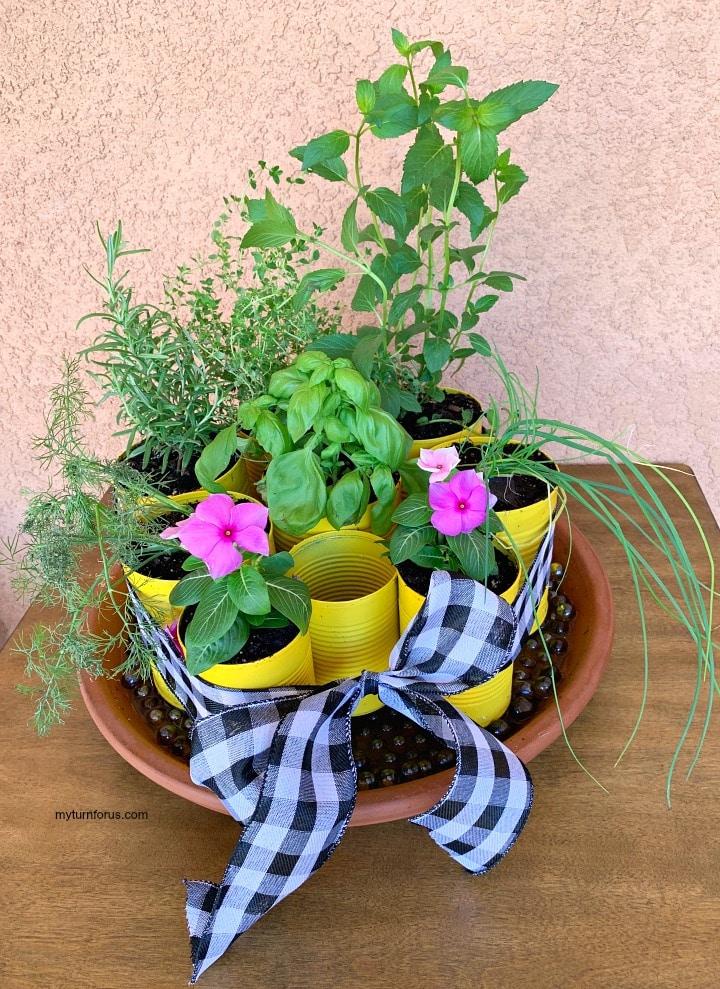 DIY indoor herb garden kit