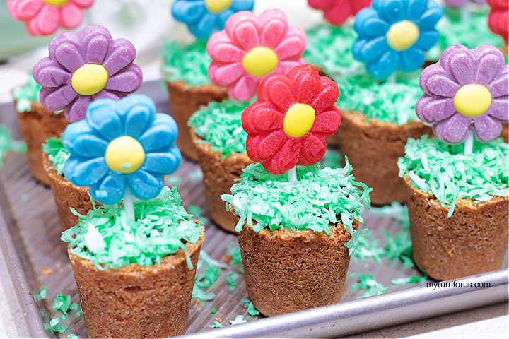 chocolate flower pot desserts on a tray